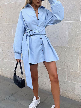Light Blue Shirt Collar Long Sleeve Mini Dress