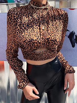 Brown Leopard Print Long Sleeve Crop Top