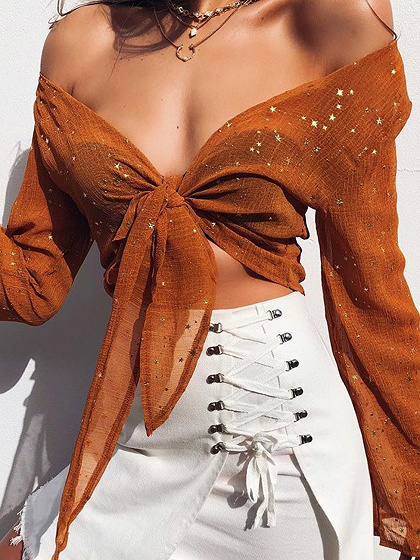 Brown Chiffon Plunge Bronzing Detail Long Sleeve Crop Top